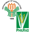 Philippine Rice Research Institute